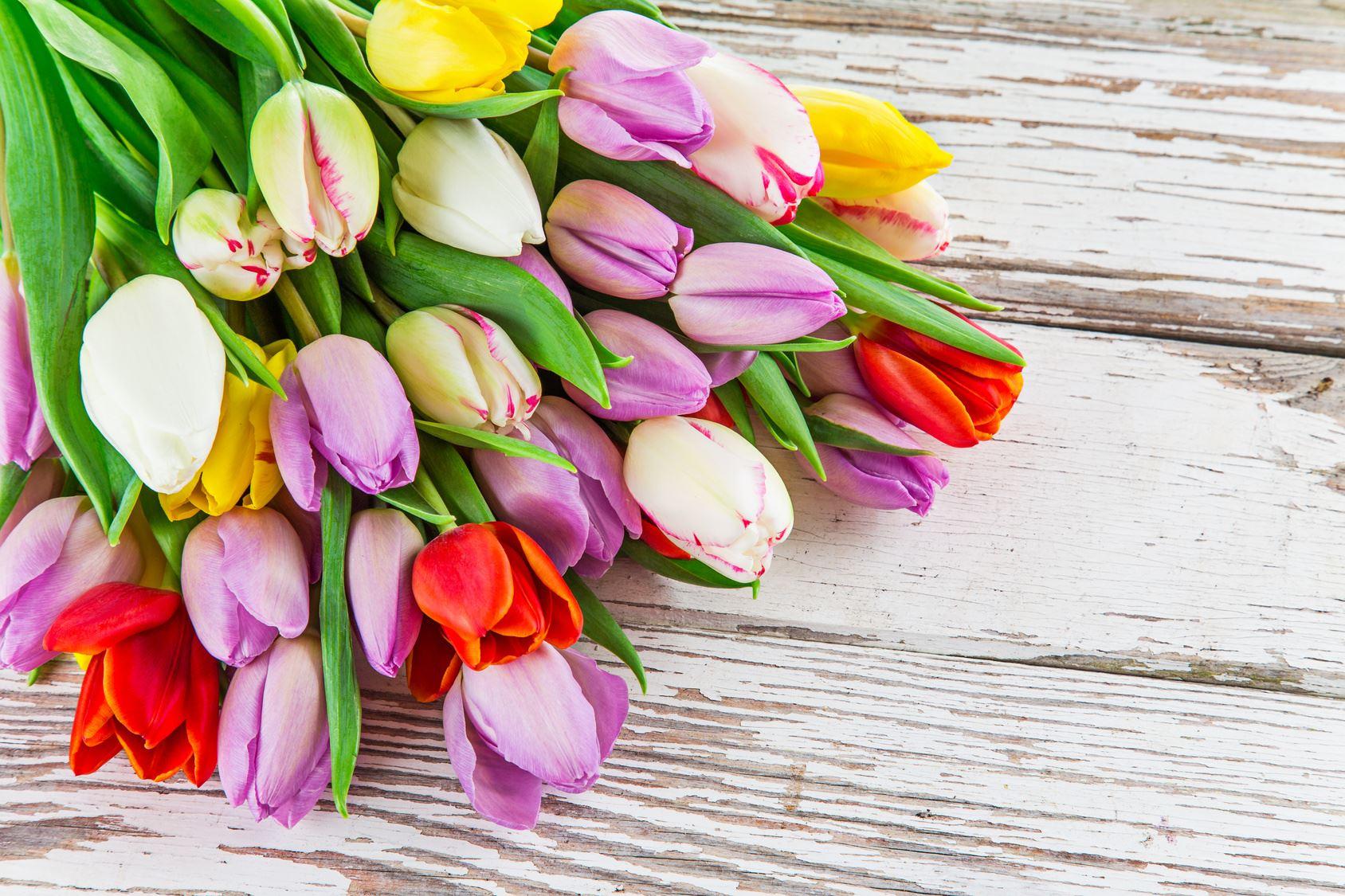 Japanische Blumen Und Ihre Bedeutung Die Beliebtesten Blumen Und